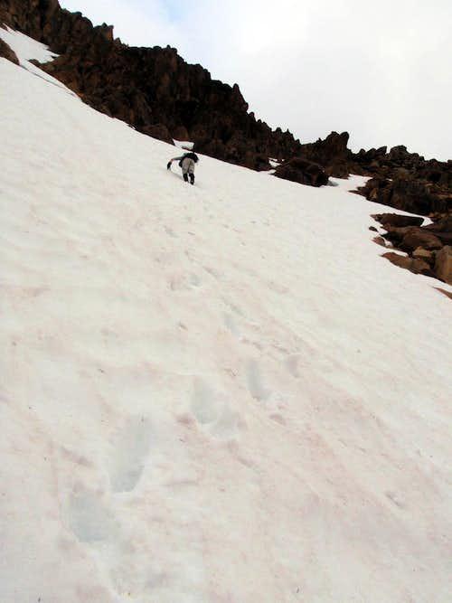 Redwic Downclimbing