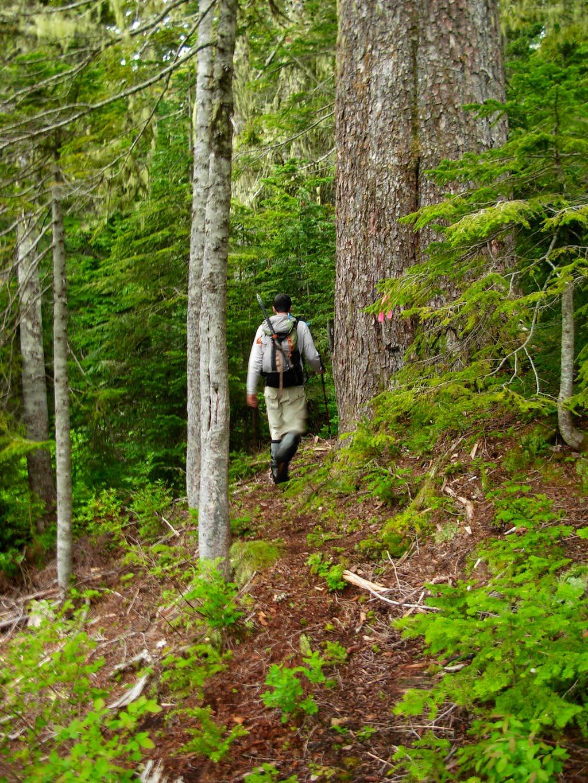 Gimpilator Hikes The New Round Mountain Trail