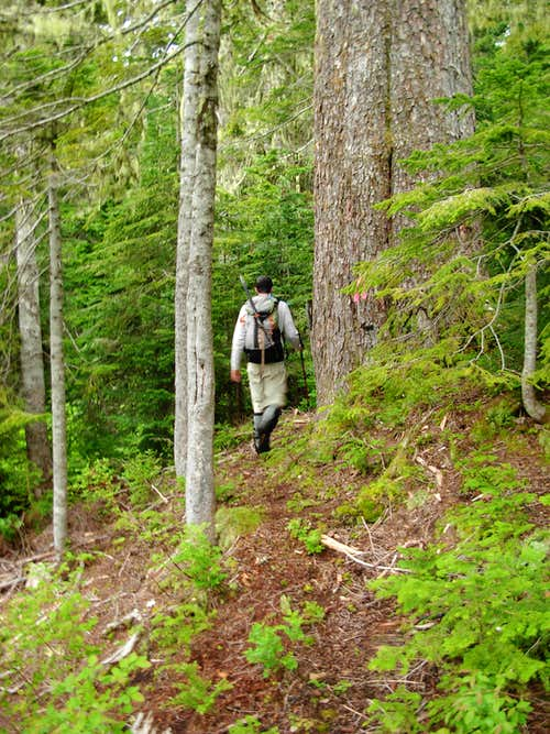 Gimpilator Hikes The New Round Mountain Trail