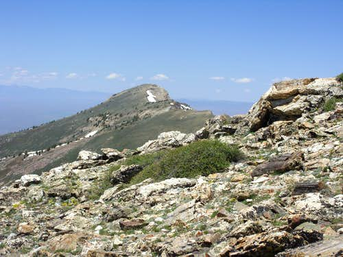 Greys Peak from the ridge near Peak 10745