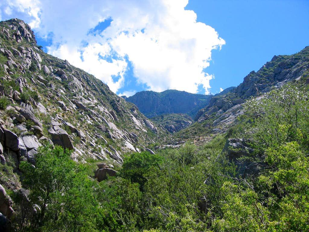 Lower La Cueva Canyon