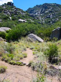 Trail to Lower La Cueva