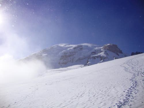 Up towards Rainier summit from Muir snowfield