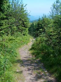 Trail to Kněhyně from Čertův Mlýn