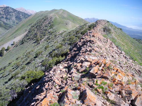 Bald Mountain Ridge