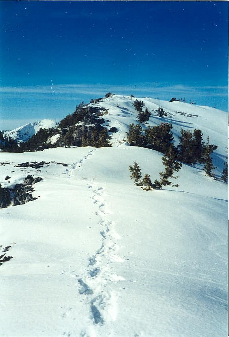 Climbing Vickory Peak