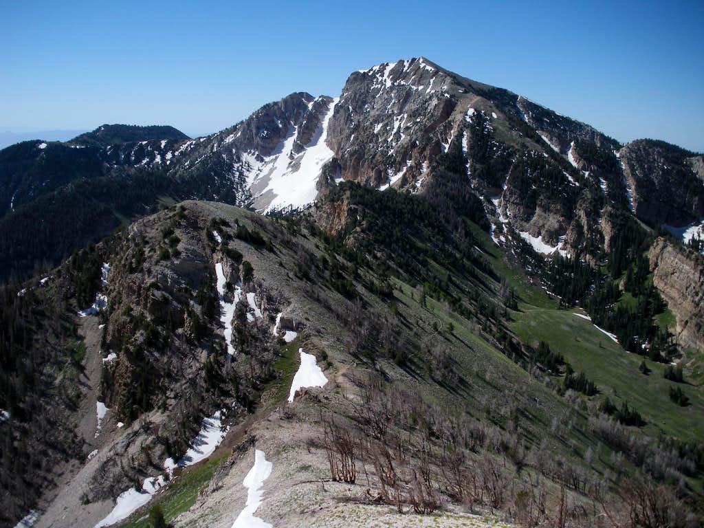 Deseret Peak from north