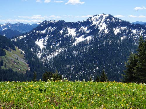 Bald Eagle Mountain