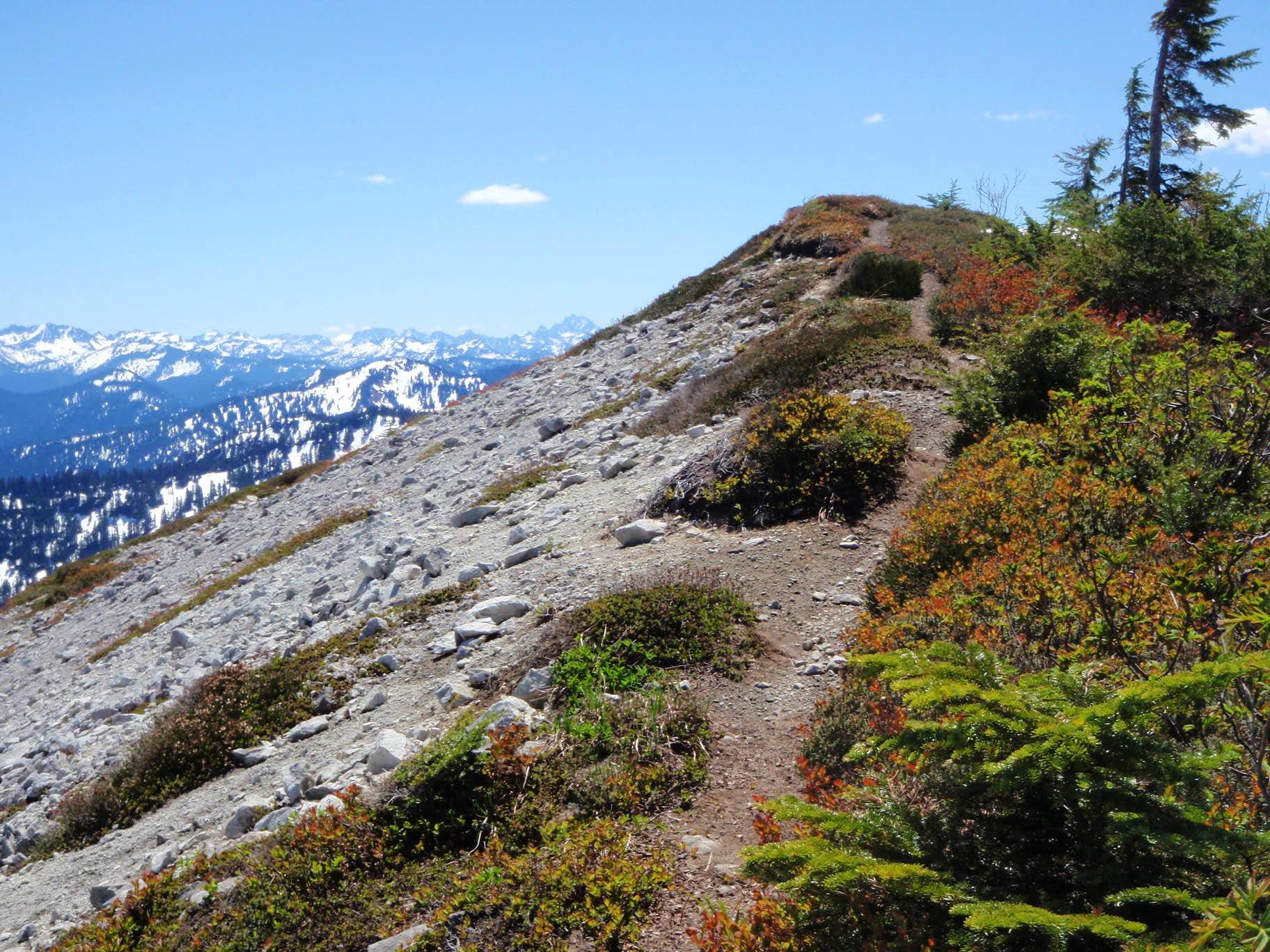 Benchmark Mountain / West Cady Ridge