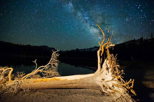 Dead Tree and Milky Way, Horseshoe Lake