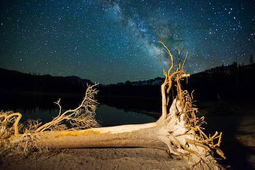 Dead Tree and Milky Way, Horseshoe Lake