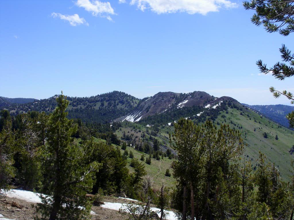 Peak 9773 and Rose Knob Peak from Rose Knob