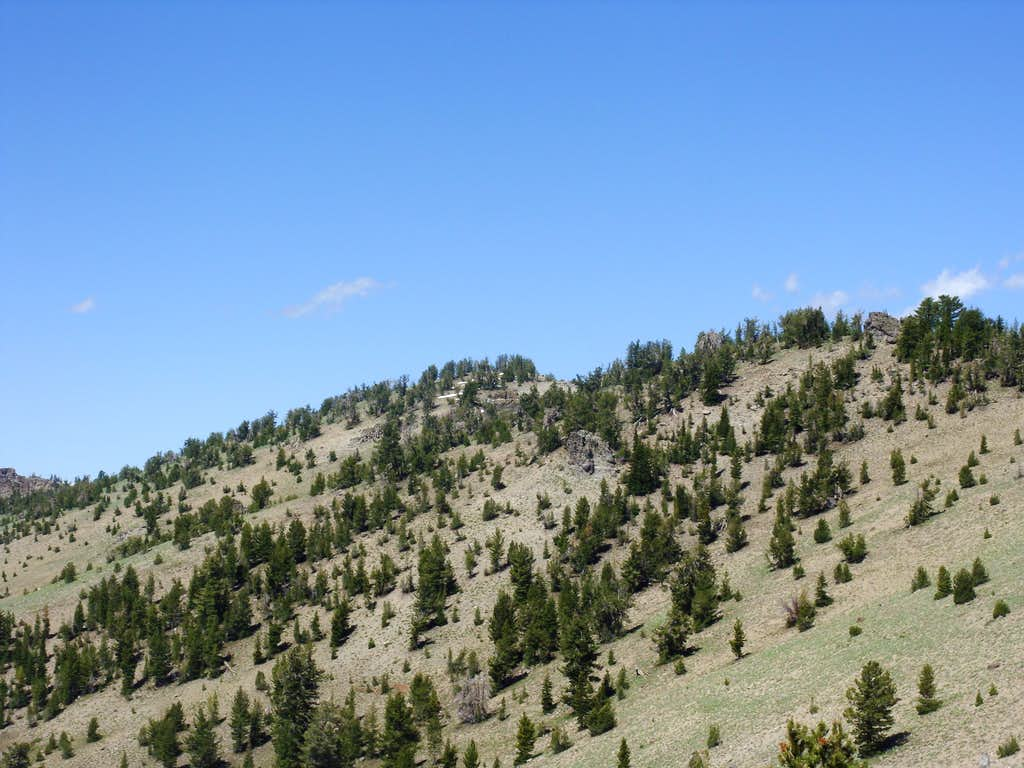Closer view of Rose Knob from the Tahoe Rim Trail