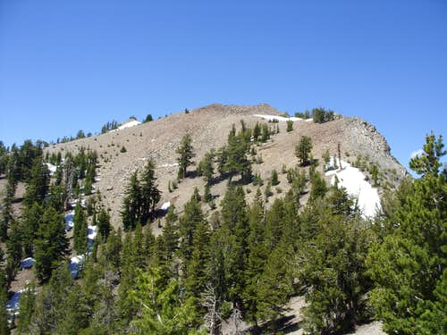 Approaching Rose Knob Peak from the Tahoe Rim Trail