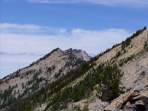 Bare Peaks