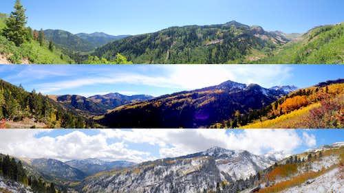 Mineral Basin Season's