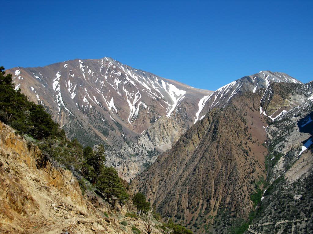 Morgan Creek Trail