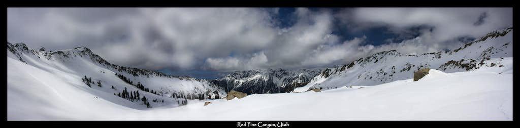 Red Pine Canyon Panorama