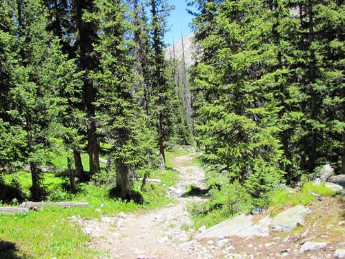 Trail to Anderson Lake