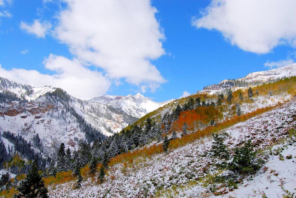 Fall Snow on Mineral Basin