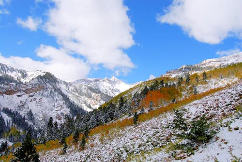 Fall Snow on Mineral Basin