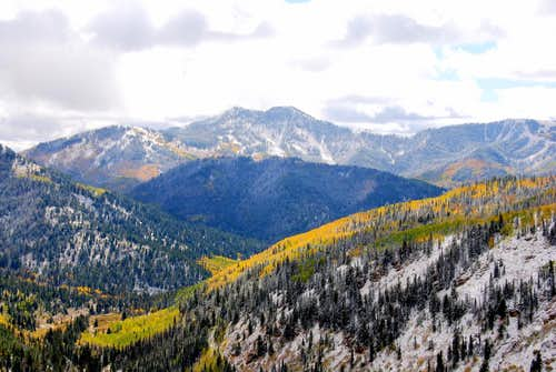 Fall around Mill Canyon Peak