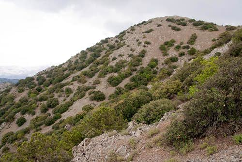 Papoutsa   Climbing 94c58a43695