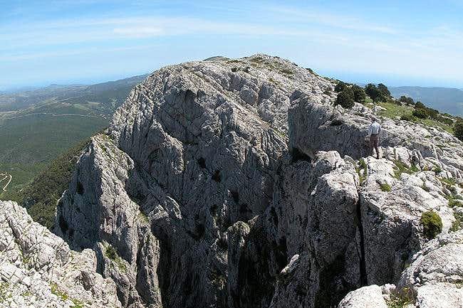 Punta Ferulargiu (1057m) with...
