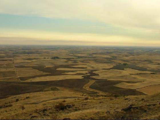 Steptoe Butte View