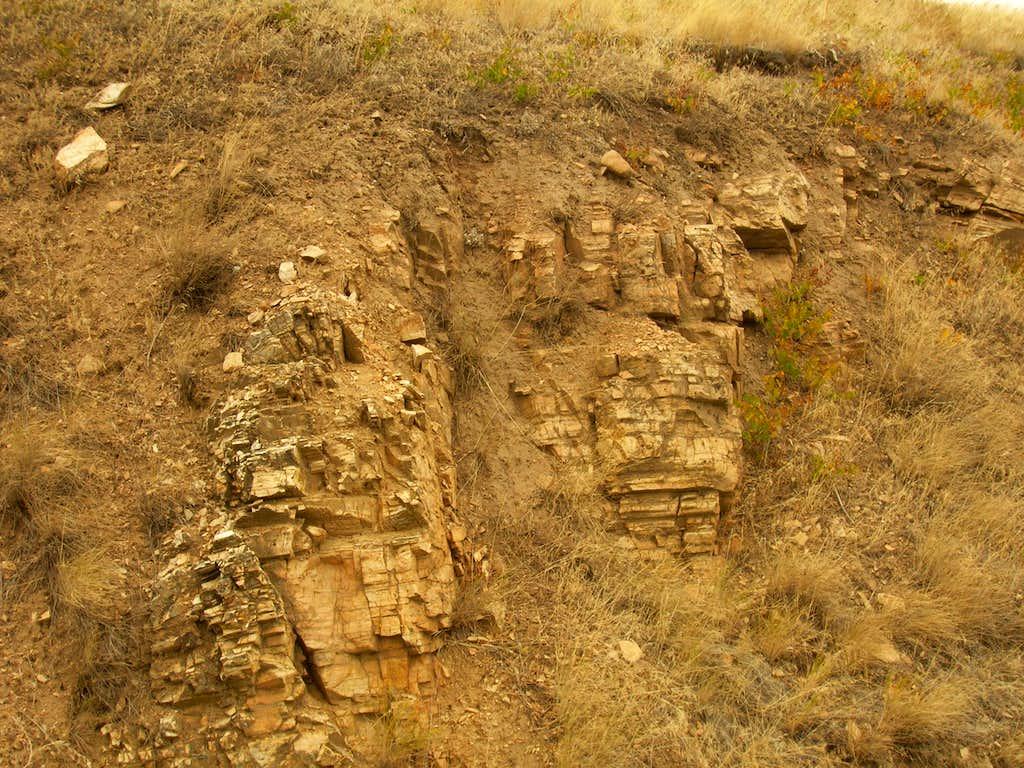 Steptoe Quartzite