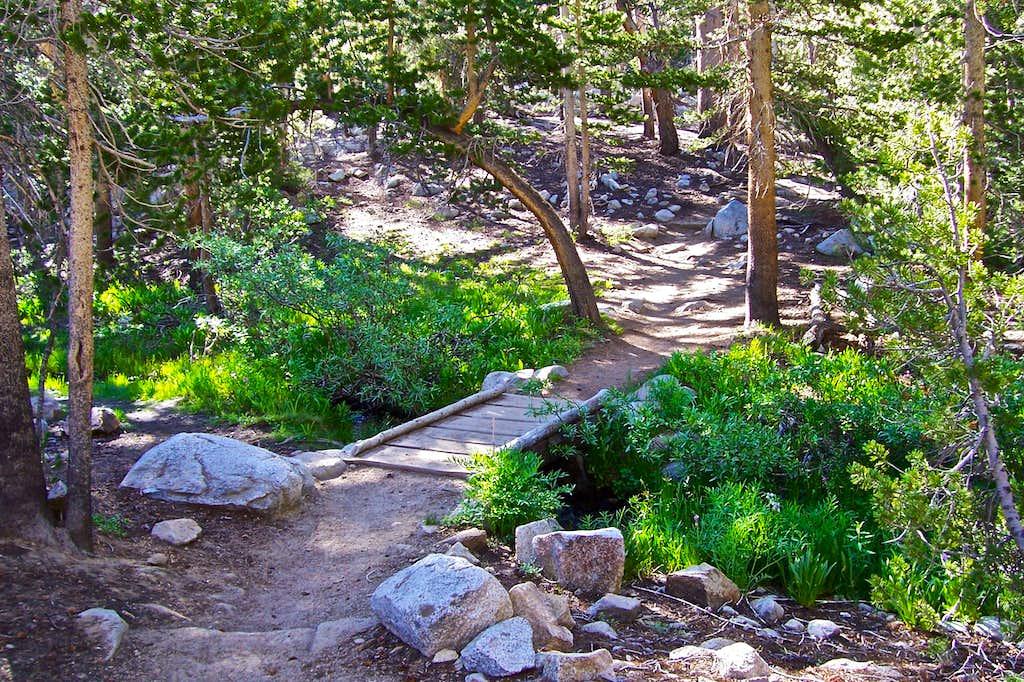 Trail to Bishop Pass
