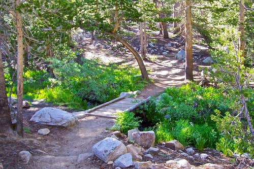 Trail to Bishop Pass