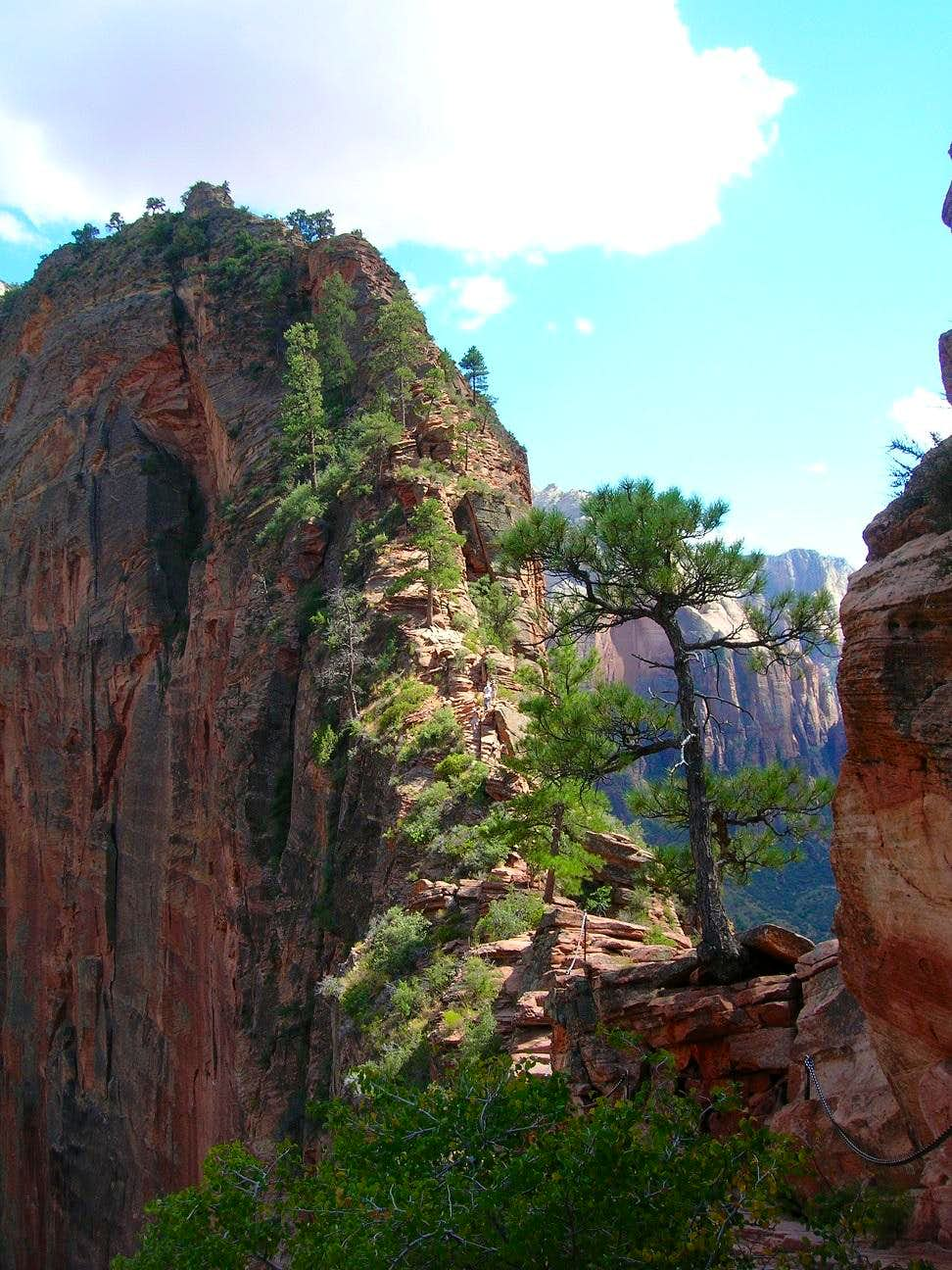 Angels Landing from trail
