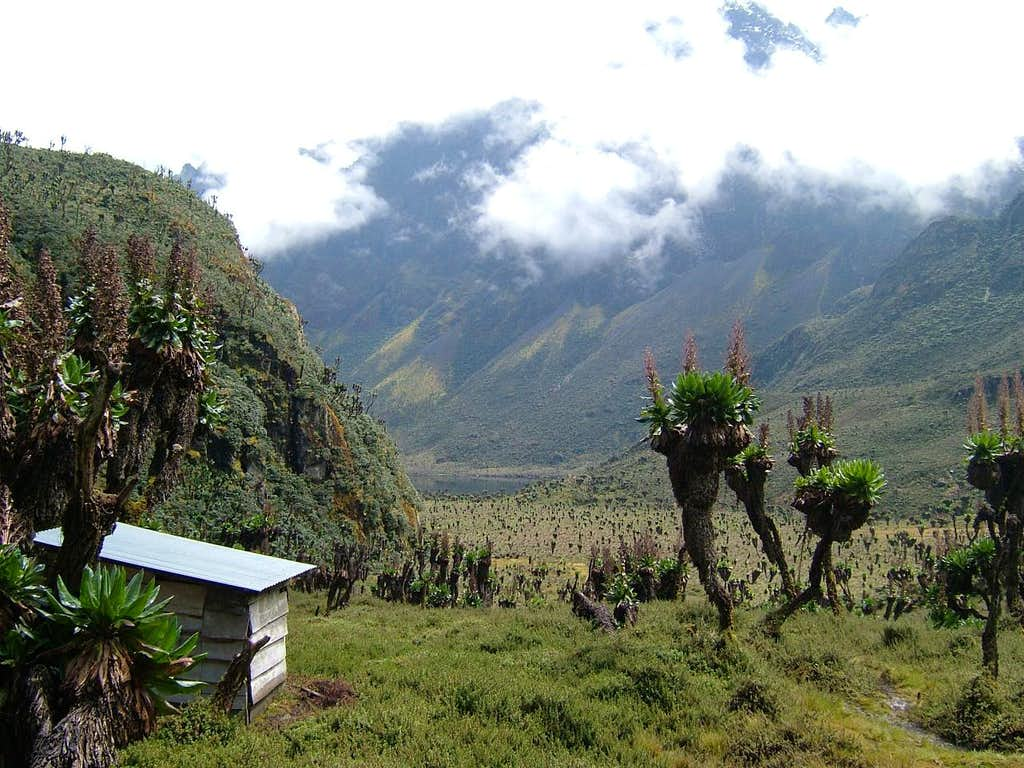 The View from Bajoko Hut