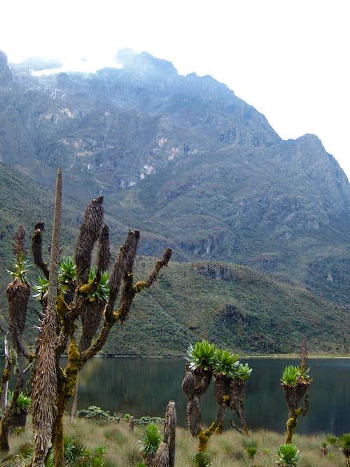 Lake Bajoko and Mount Stanley