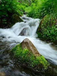 Upper Grove Creek