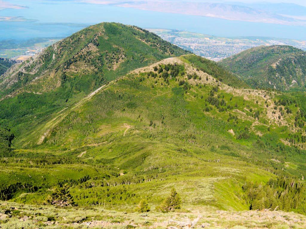 Provo Peak Trail