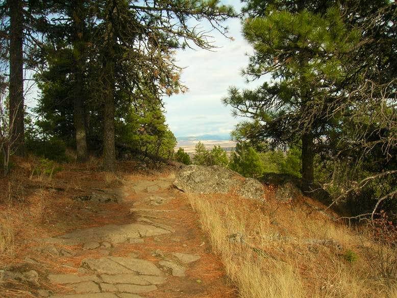 Kamiak Butte Pine Ridge Trail