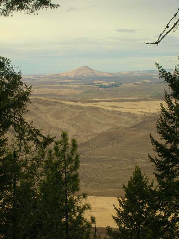 Steptoe Butte From Kamiak