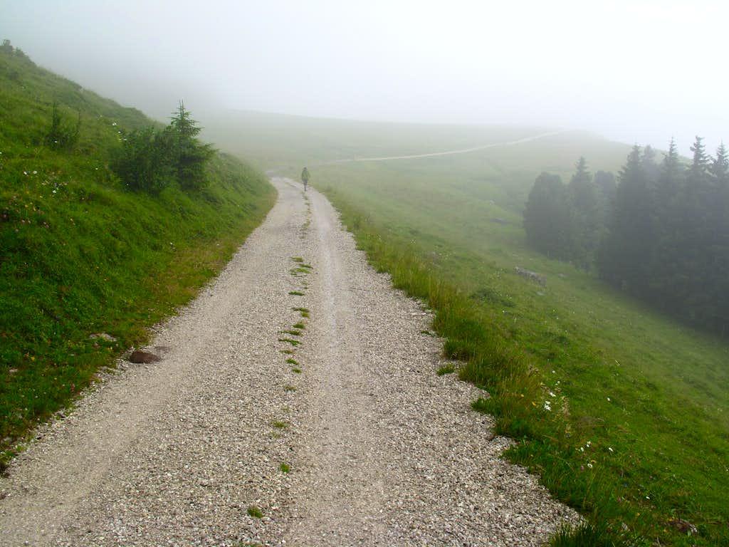 Swiss Hike 2