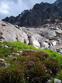 Goat Creek Drainage