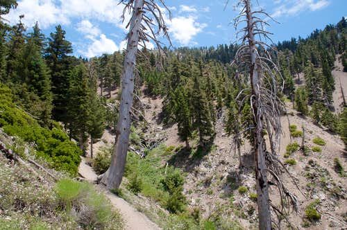 Icehouse Canyon
