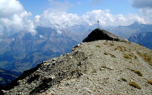 On the summit of the Albrist (2761m) between Lenk and Adelboden