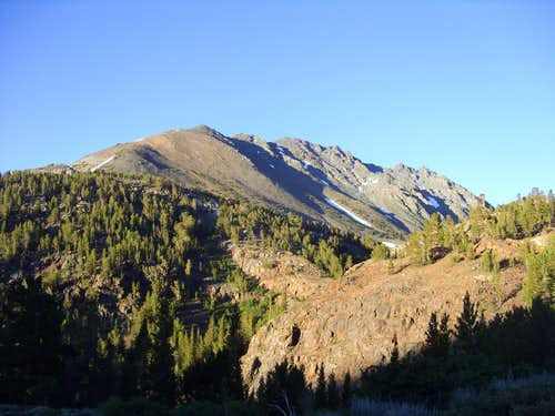 Black Mountain from the Virginia Lakes Trail