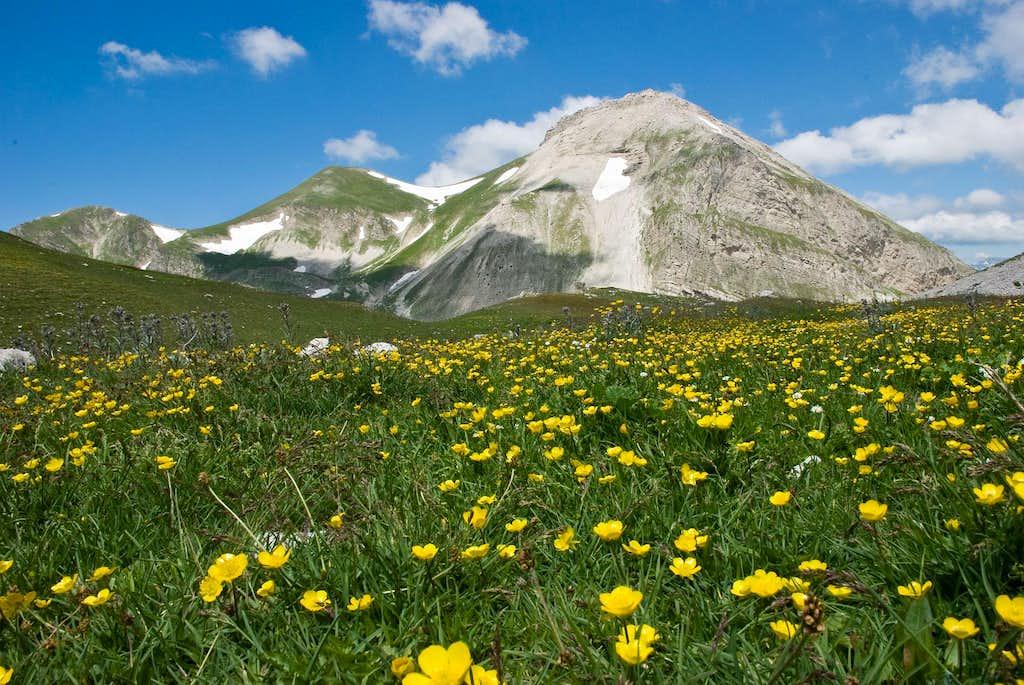 Monte Corvo from Venacquaro