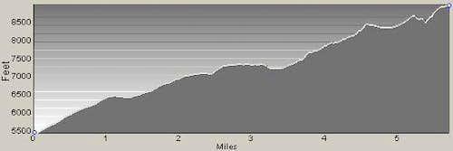 East Ridge Profile