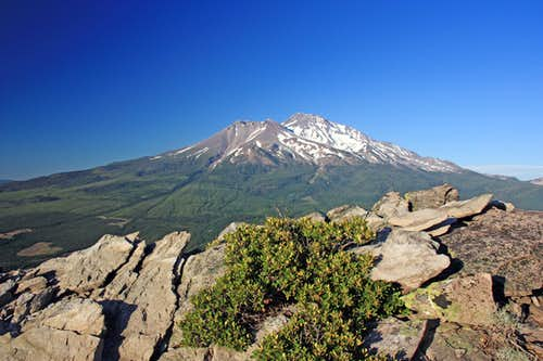 Mt. Shasta from Black Butte