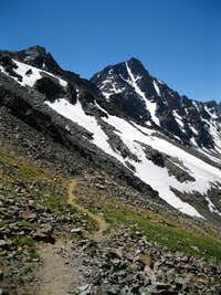 Whitetail from Sundance Pass