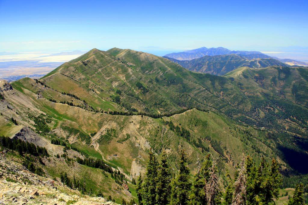 The summit view off of Lowe Peak