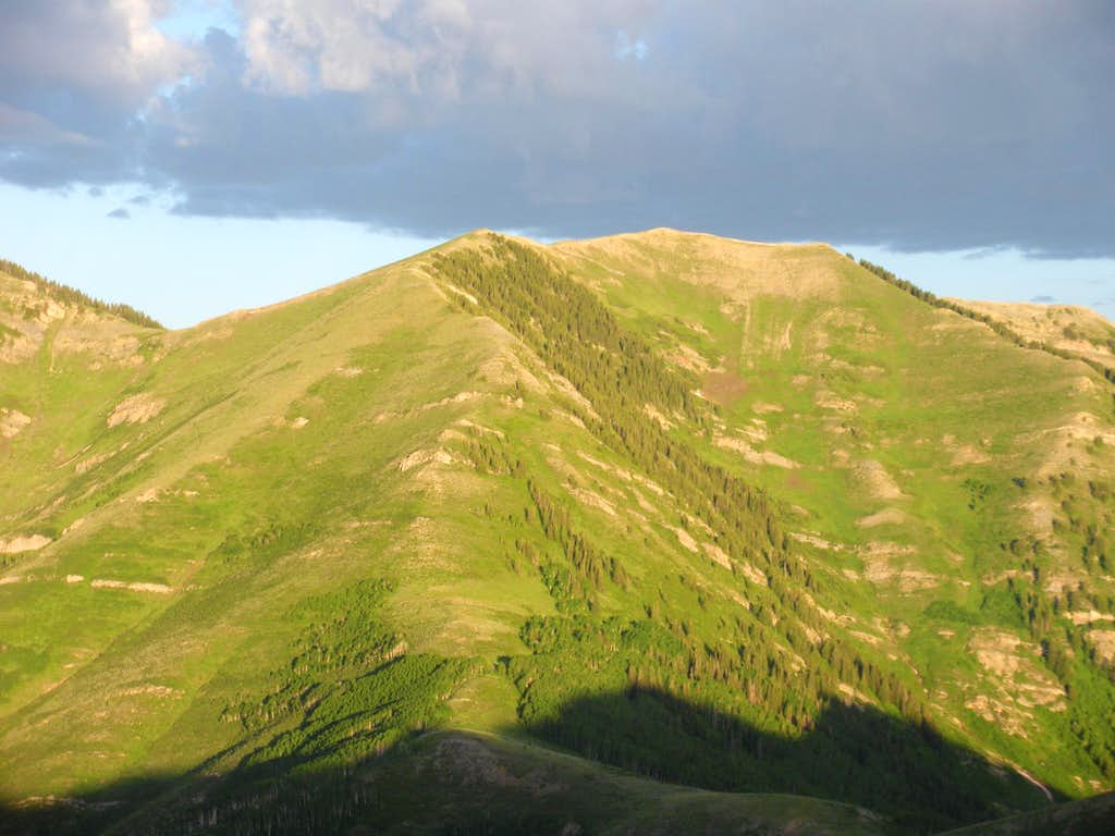 White Pine Peak